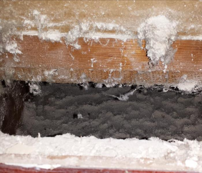 Don't forget the air ducts if you have mold Before