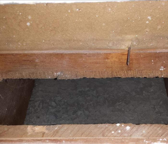 Don't forget the air ducts if you have mold After
