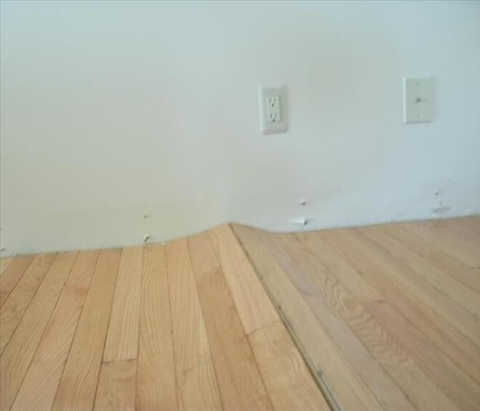 Wet hardwood floors.