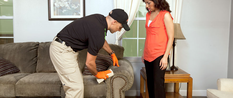 Midland, MI carpet upholstery cleaning